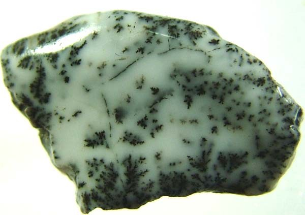 DENDRITIC OPAL ROUGH [FJP2720 ]