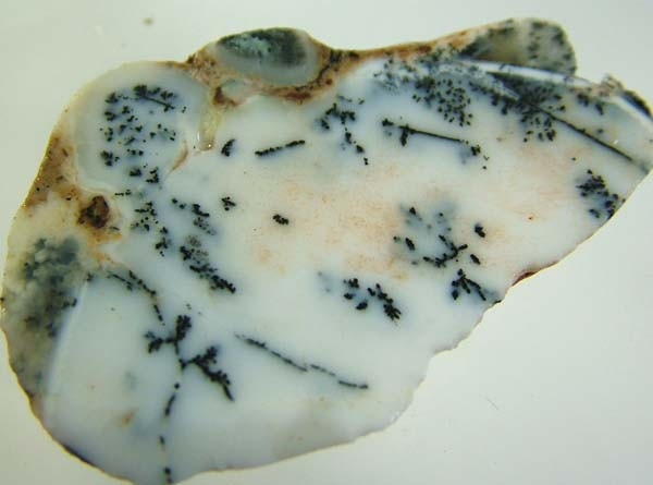 DENDRITIC OPAL ROUGH [FJP2787 ]