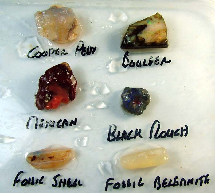 ROUGH  BLACK, WHITE,BOULDER,MEXICAN,FOSSILS [FJP3024]