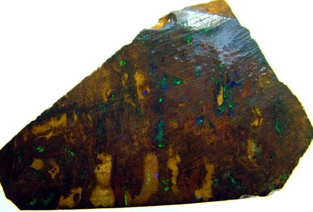 BOULDER ROUGH FROM QUILPIE 81  CTS  [BY09 ]