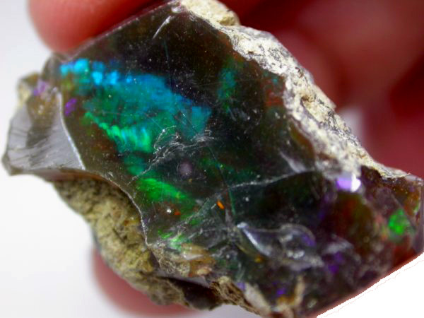 STUNNING DARK BROWN OPAL FROM ETHIOPIA  26.1 CTS [HOP15]