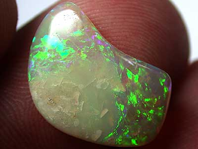 POLISHED OPAL SHELL 2.35CTS FO340