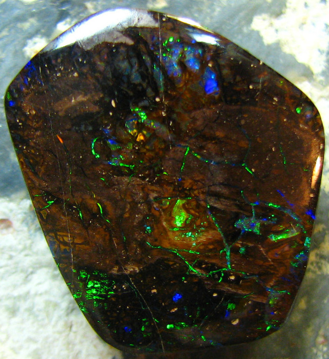100+MILLION OF YEARS OLD OPALIZED WOOD PATTERN BRIGHT 25CTS A7126