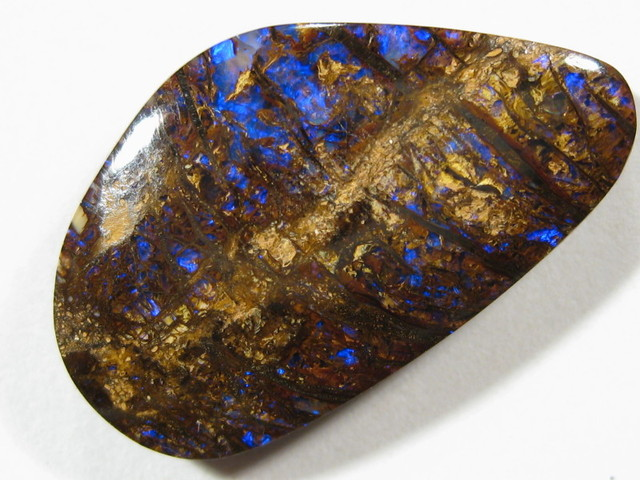 Quality 'Opalized Wood' or 'Wood Replacement Opal' from Yowah Opal Field, Qld.