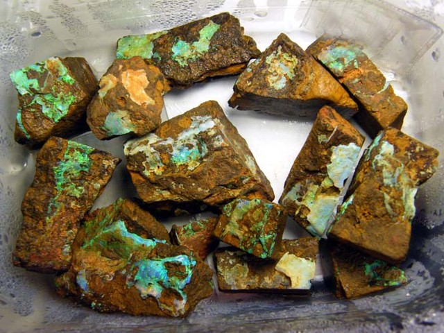 BOULDER ROUGH OPAL ELECTRIC GREEN  3230CTS /646 GRAMS