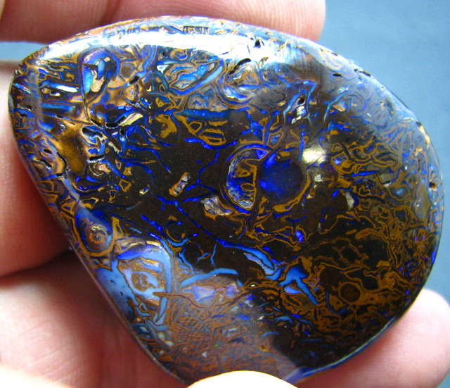 269.80 CTS  BOULDER OPAL SPECIMEN ELECTRIC BLUE FIRE A9686