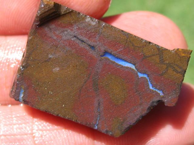 Rough Sawn Boulder Opal ready to cut and polish.