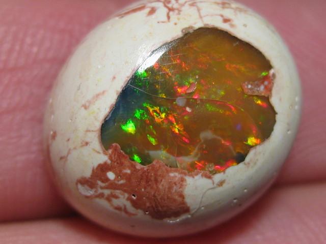 OpalWeb - Gemmy Mexican Opal - 11.30Cts.