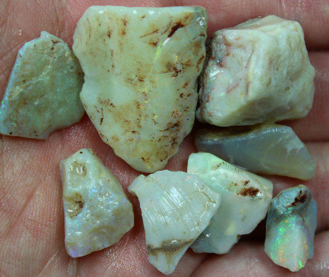 157.40 CTS OPAL SHELL FROM COOBER PEDY PARCEL 8 PIECES
