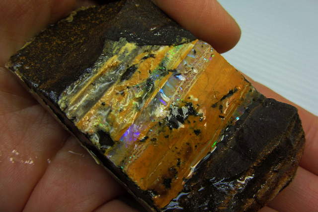 82GMS  OWN PART OF BOULDER HISTORY-ROUGH OPAL MMM 167