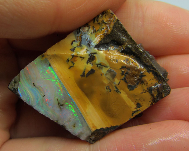 16GMS  OWN PART OF BOULDER HISTORY-ROUGH OPAL MMM 177