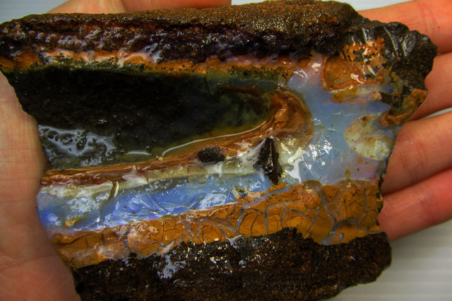 249GMS  OWN PART OF BOULDER HISTORY-ROUGH OPAL MMM 187