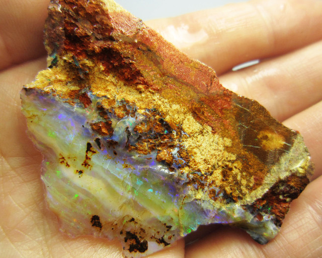 23GMS  OWN PART OF BOULDER HISTORY-ROUGH OPAL MMM 447