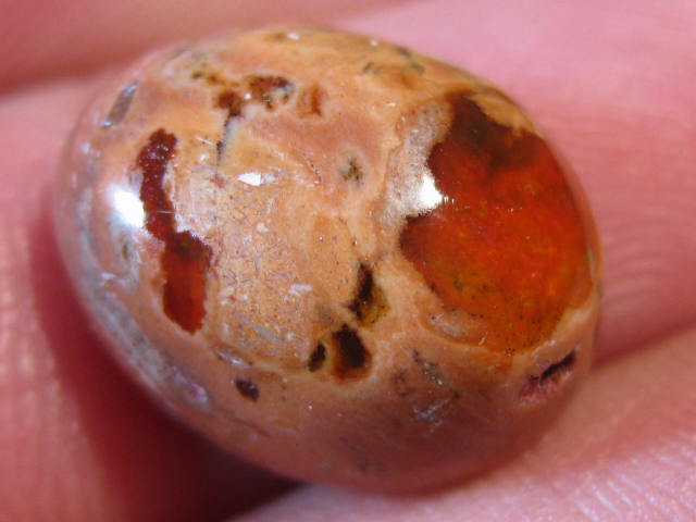 OpalWeb - NEW STOCK Mexican Opal - 9.50Cts.