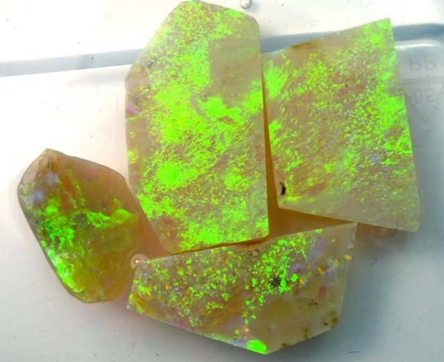 SOLID  OPAL ROUGH  L. RIDGE  49.50  CTS  DT-
