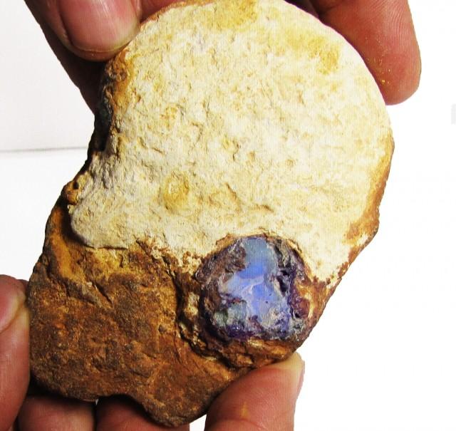 43 grams  Boulder Opal  rough specimen   PL 1056