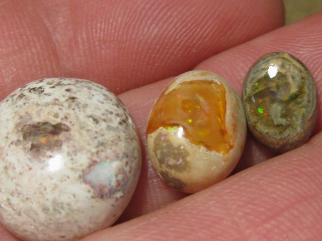 OpalWeb - Latest  Stock Mexican Opal - 22.8Cts.