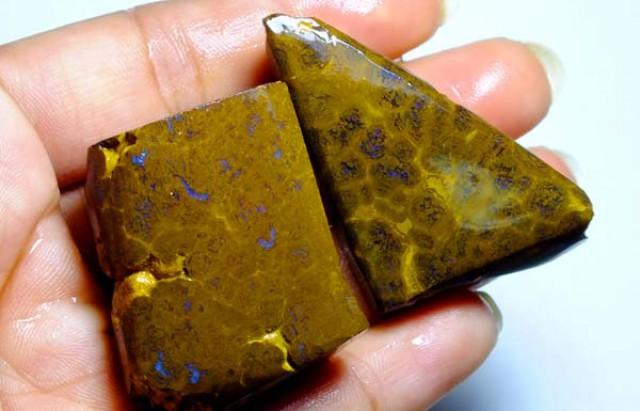 267cts Australian Boulder Opal Rough 2pcs C86