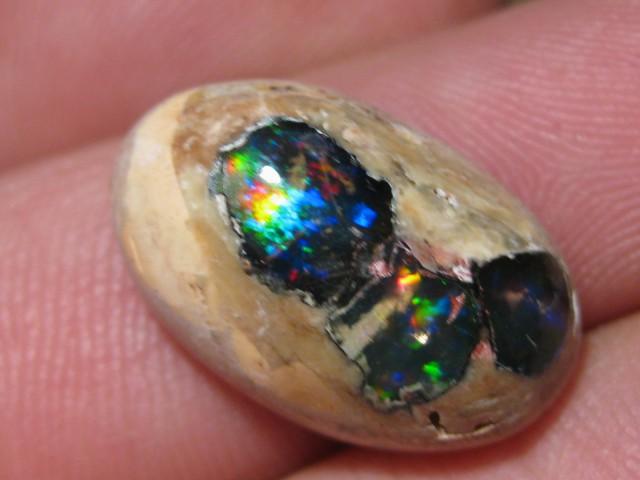 OpalWeb - Gemmy Mexican Doublet Opal - 11.75Cts.
