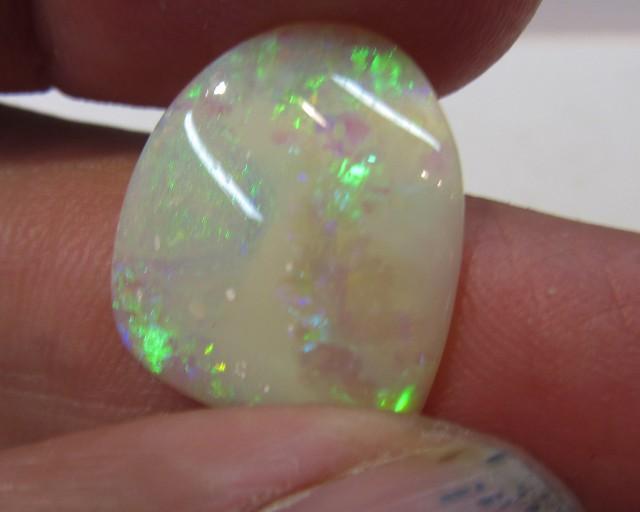 C/P Opal Shell  AGR 153