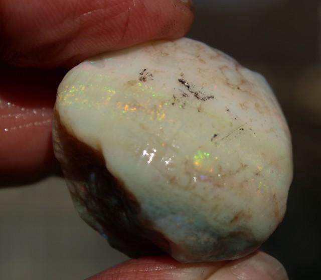HUGE Semi Black Rainbow Clam Shell 115 carats Coober Pedy