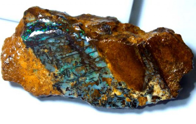 BOULDER OPAL FOSSIL WOOD 65.50  CTS  GC