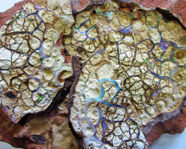 Pancake  specimen Yowah Opal  AGR 1915