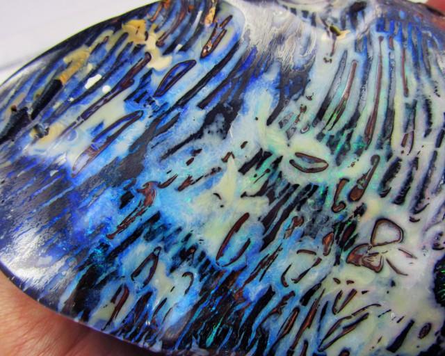 Magnificent Boulder opal Specimen  AGR2031