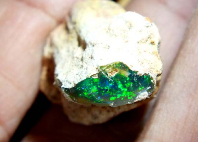 OPALISED WOOD OPAL ROUGH 590  CTS GC