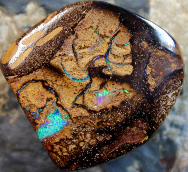 39.70 CTS BOULDER OPAL WOOD FOSSIL POLISHED STONE C9833