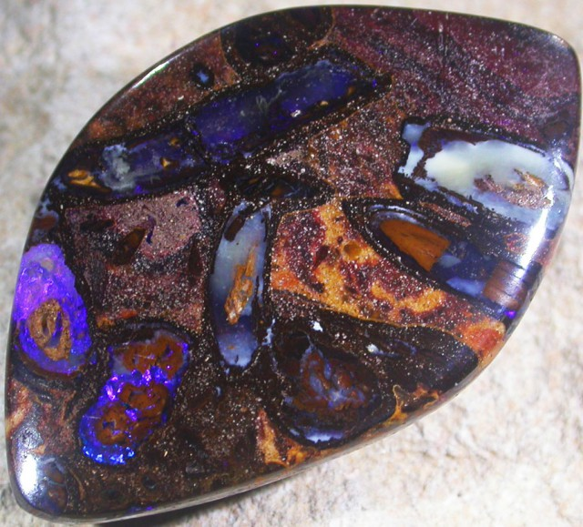 40.7 CTS BOULDER OPAL FOSSIL-YOWAH [SO5261]