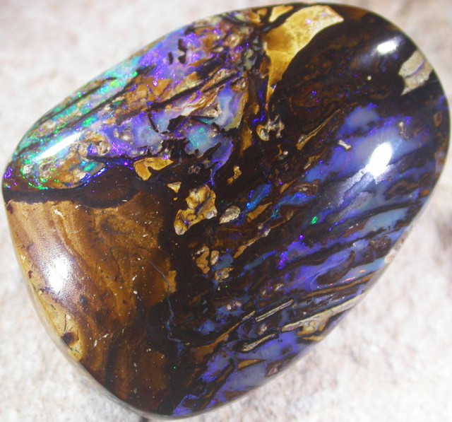 92.6 CTS BOULDER OPAL FOSSIL-YOWAH [SO5264]