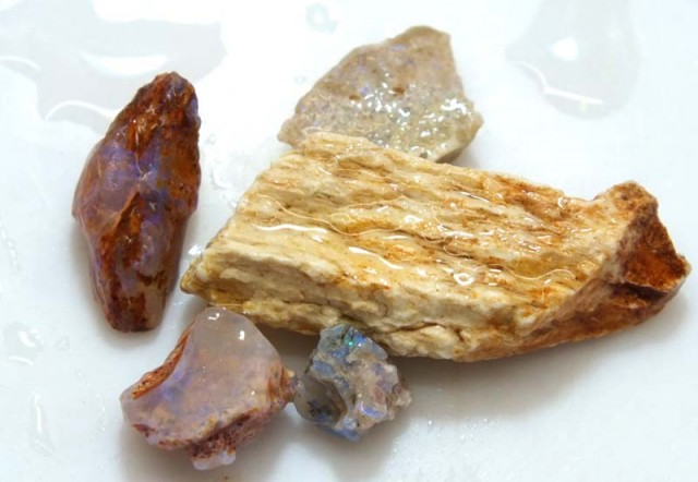 20 CTS OPAL FOSSIL WOOD PARCEL FO-311