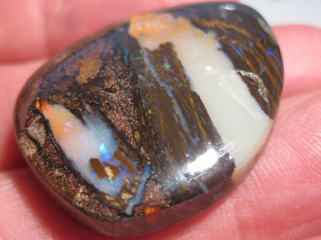 YowahOpals*63.7Cts - Matrix Opal / Opalized Wood