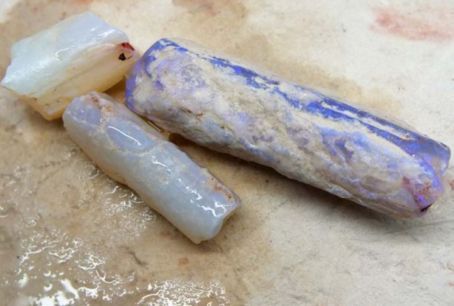 38CTS  OPAL FOSSIL BELEMNITE (PARCEL)  FO-466