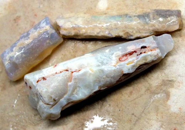 52CTS  OPAL FOSSIL BELEMNITE(PARCEL)  FO-470