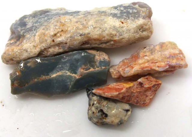25 CTS OPAL FOSSIL WOOD PARCEL FO-507