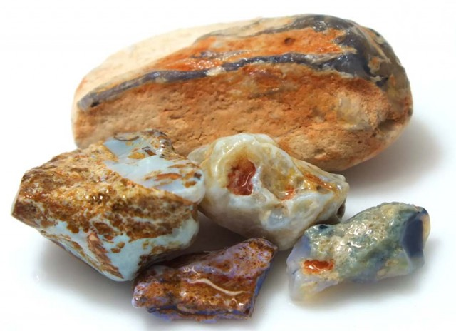 45 CTS OPAL FOSSIL WOOD PARCEL FO-640