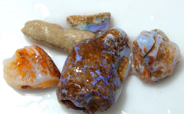 30 CTS OPAL FOSSIL WOOD PARCEL FO-645