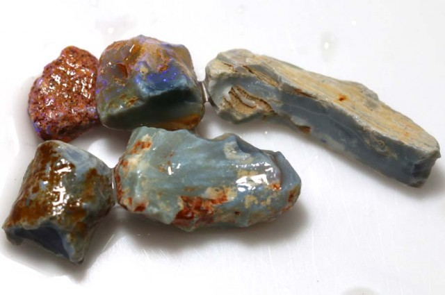 20 CTS OPAL FOSSIL WOOD PARCEL FO-662