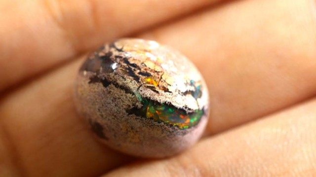 6 CTS OPAL MEXICAN CAB FOB-504