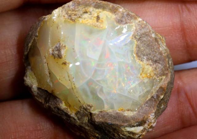78 CTS ETHIOPIAN OPAL ROUGH SPECIMEN DT-6740