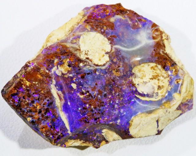 34.2 Cts Boulder Wood Fossil polished  BU 2139
