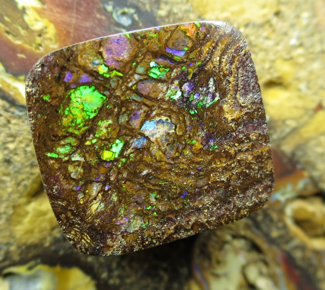 11cts.*WOOD* RARE OPALIZED WOOD,