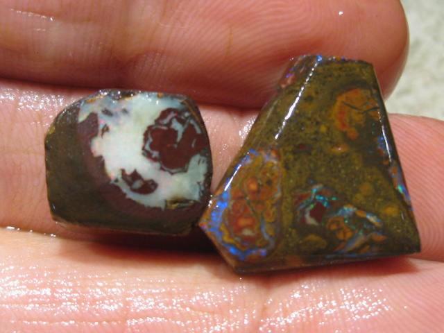OpalWeb *36.6Cts - Yowah Boulder Matrix Opal 'RUBS'