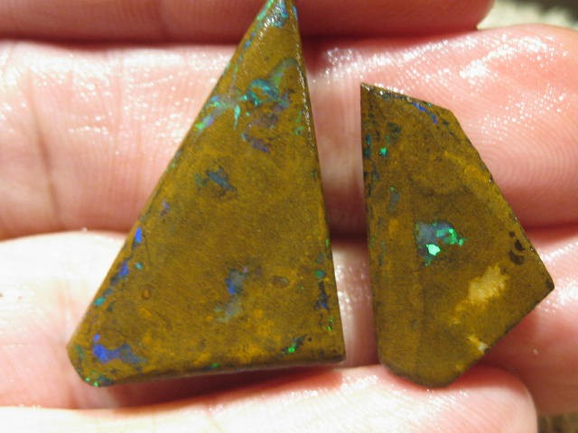 OpalWeb *49.1Cts - Yowah Boulder Matrix Opal 'RUBS'