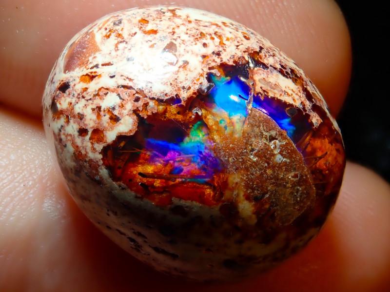 $1 NR Auction 14.66ct Mexican Matrix Cantera Multicoloured Fire Opal
