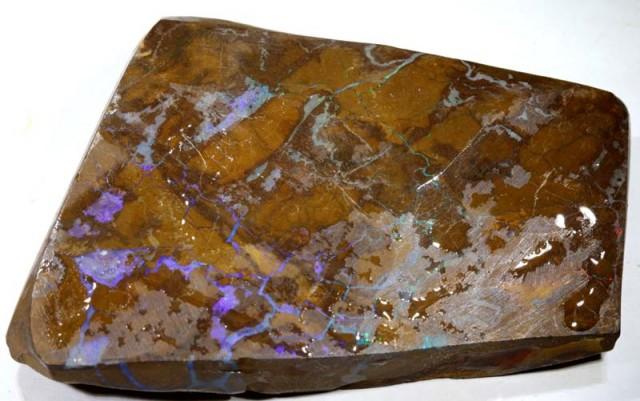 204 cts Australian Boulder Opal Rough pcs C-367
