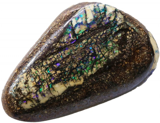 18.70 CTS BOULDER WOOD FOSSIL-WINTON [Q BY4874 ]SH