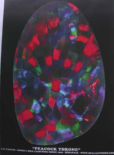 A4 SIZE POSTER OF RARE HARLEQUIN PATTERN STONE